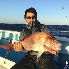 11月 10日(土) 午後便・ウタセ真鯛の写真その3