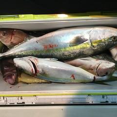 11月16日(金)午後便・ウタセ釣りの写真その8