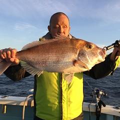 11月 17日(土) 午後便・ウタセ真鯛の写真その3