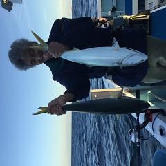 11月 17日(土) 午後便・ウタセ真鯛の写真その4