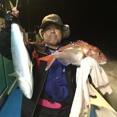 11月 27日(火) 午後便・ウタセ真鯛の写真その3