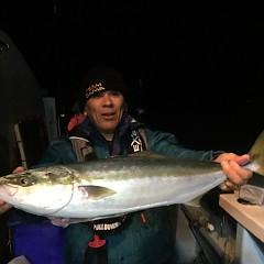 11月 27日(火) 午後便・ウタセ真鯛の写真その4