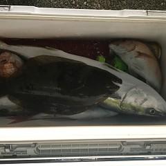 11月29日(木)午前便・ヒラメ釣り・午後便・ウタセ釣りの写真その6