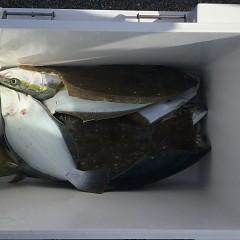 11月 30日(金) 午前便・ヒラメ釣りの写真その1