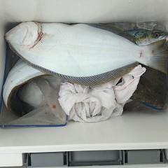 12月 2日(日) 午前便・ヒラメ釣り 午後便・ウタセ真鯛の写真その4