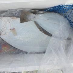 12月 2日(日) 午前便・ヒラメ釣り 午後便・ウタセ真鯛の写真その7