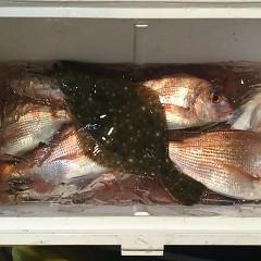 12月 3日(月) 午後便・ウタセ真鯛の写真その4
