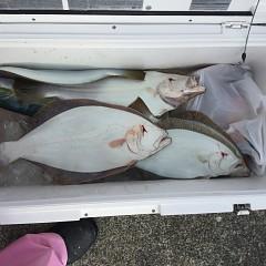 12月9日(日)午前・午後便・ヒラメ釣りの写真その5