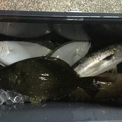 12月 13日(木) 午後便・ヒラメ釣りの写真その4