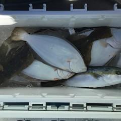 12月15日(土)午前・午後便・ヒラメ釣りの写真その3