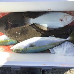 12月 19日(水) 午前便・ヒラメ釣りの写真その7