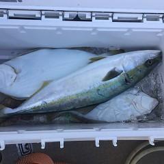 12月 19日(水) 午前便・ヒラメ釣りの写真その8