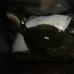 12月 19日(水) 午後便・ヒラメ釣りの写真その9
