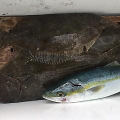 12月27日(木)午前便・ヒラメ釣りの写真その4