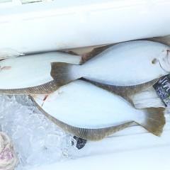 12月31日(月)午前便・ヒラメ釣りの写真その7