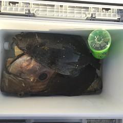 12月 8日(火) 1日便・泳がせ釣りの写真その8