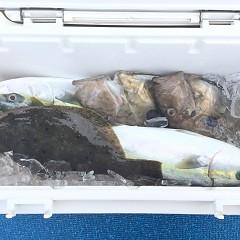 1月 11日(金) 午前便・ヒラメ釣りの写真その8