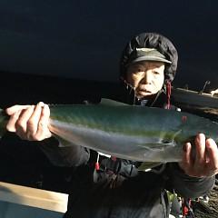 1月 11日(金) 午後便・アジ釣りの写真その2