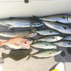 1月 17日(木) 午前便・ヒラメ釣りの写真その6