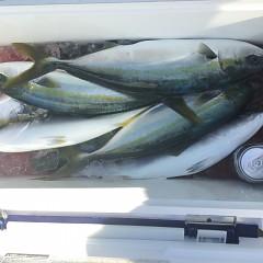 1月 17日(木) 午前便・ヒラメ釣りの写真その7