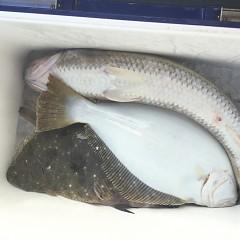 1月18日(金)午前便・ヒラメ釣り・午後便・アジ釣りの写真その1