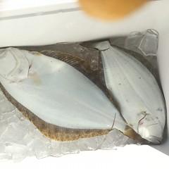 1月18日(金)午前便・ヒラメ釣り・午後便・アジ釣りの写真その2