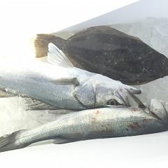 1月21日(月)午前便・ヒラメ釣りの写真その3
