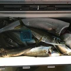 1月25日(金)午前便・ヒラメ釣り・午後便・アジ釣りの写真その3