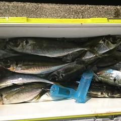 1月25日(金)午前便・ヒラメ釣り・午後便・アジ釣りの写真その5