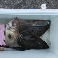 1月26日(土)午前便・ヒラメ釣りの写真その2
