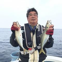 3月29日(金)午後便・アジ釣りの写真その2