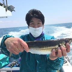 4月 13日(土) 午前・午後・アジ釣りの写真その2