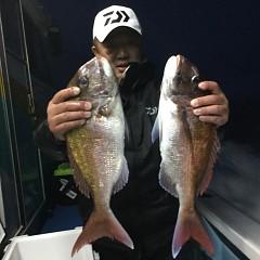 4月29日(月)午前・アジ釣り・午後便・マダイ釣りの写真その2