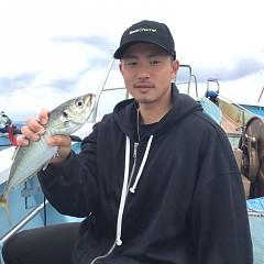 4月29日(月)午前・アジ釣り・午後便・マダイ釣りの写真その6