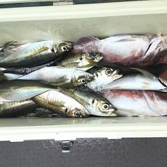 4月29日(月)午前・アジ釣り・午後便・マダイ釣りの写真その8