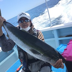5月 30日(木) 午前便・アジ釣り 午後便・ウタセ真鯛の写真その1