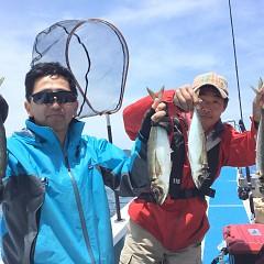 5月 30日(木) 午前便・アジ釣り 午後便・ウタセ真鯛の写真その2