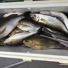 6月13日(木)午後便・イサキ釣りの写真その8