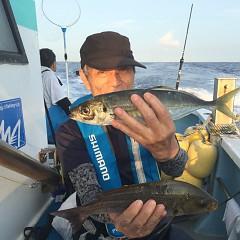 6月 28日(金) 午前・午後・イサキ釣りの写真その2