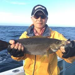 7月 10日(水) 午前・午後・イサキ釣りの写真その1