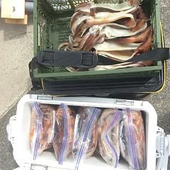 7月22日(月)スルメイカ釣りの写真その4