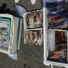 7月 28日(日) 1日便・スルメイカ釣りの写真その8