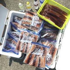 7月 28日(日) 1日便・スルメイカ釣りの写真その12