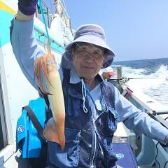 7月 31日(火) 1日便・スルメイカ釣りの写真その4