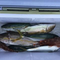 8月30日(金)午前便・タテ釣りの写真その1