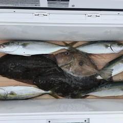 8月30日(金)午前便・タテ釣りの写真その2