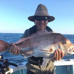 9月 16日(月) 午前・タテ釣り 午後・ウタセ真鯛の写真その3