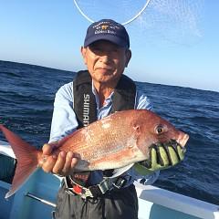 9月 16日(月) 午前・タテ釣り 午後・ウタセ真鯛の写真その4
