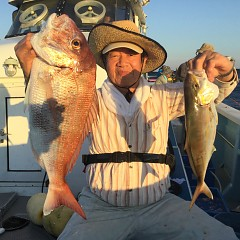9月 16日(月) 午前・タテ釣り 午後・ウタセ真鯛の写真その5