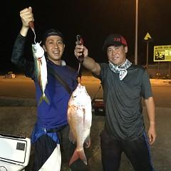 9月 17日(火) 午前・タテ釣り 午後・ウタセ真鯛の写真その7